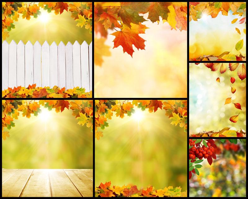 边框/枫叶护栏边框摄影高清图片