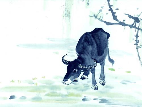 十二生肖牛动物图片
