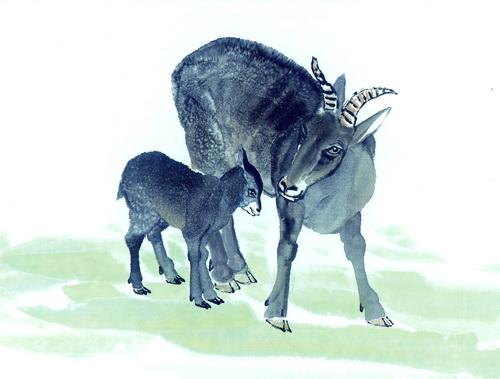 水墨十二生肖羊 - 动物图片素材图片