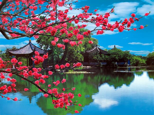 桃花湖畔风景图片psd分层素材