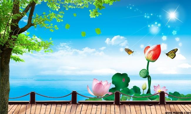 天鹅湖风光 荷塘天鹅图片 大雁荷塘风景图片 荷叶笑脸蜻蜓水珠 荷花荷图片