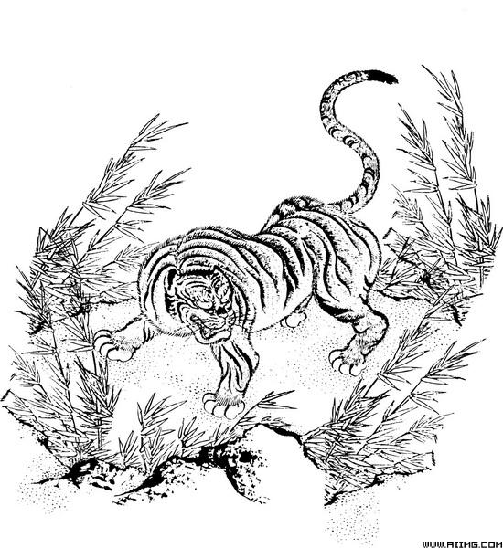 线条老虎矢量素材 - 爱图网设计图片素材下载