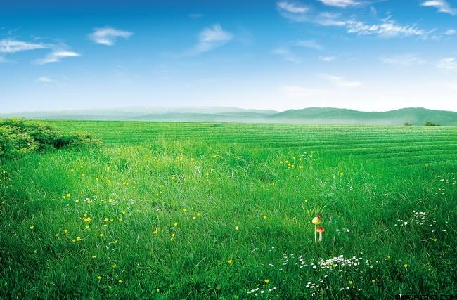 草原蓝天白云风景psd素材 别墅自然景观psd素材 小房子卡通春天背景