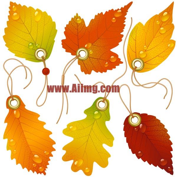 秋天树叶吊牌矢量素材