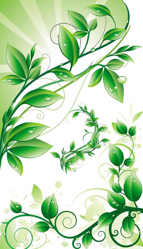 绿色树叶图案矢量素材 绿色诗意蒲公英插图文本框矢量素材 可爱植物