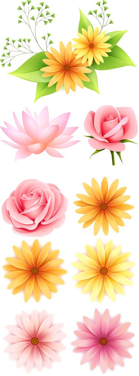 绿色春天元素矢量素材  关键字: 春天花卉花朵荷花牡丹玫瑰绿色免费设