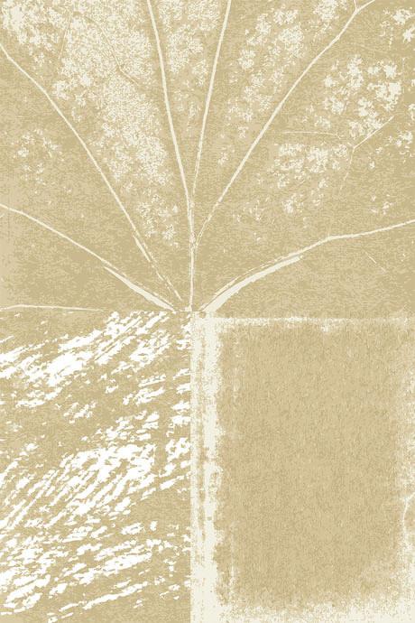树叶肌理构成设计图片