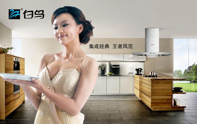 德意油烟机广告psd素材 先飞厨卫生活宣传广告psd素材 爱仕达厨房用具