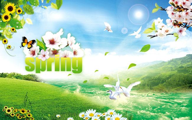 春天桃花向日葵背景psd素材