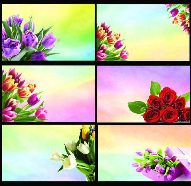 唯美鲜花花卉背景名片卡片设计psd素材