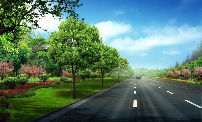 城市道路景观设计psd素材