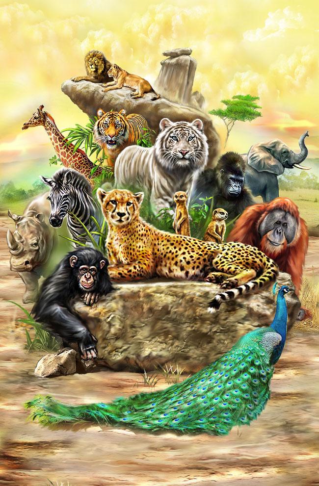 动物世界图片psd素材