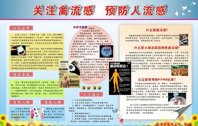 H7N9禽流感预防宣传海报矢量素材图片