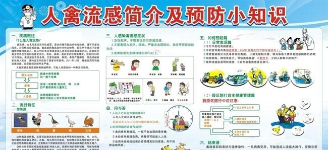 H7N9禽流感预防小常识矢量素材图片