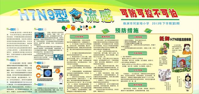 H7N9禽流感预防措施海报设计矢量素材图片