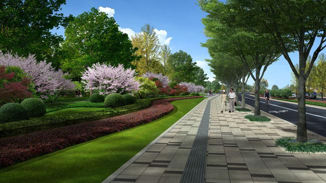 生态 马路 人行道 绿化 景观 城市街道规化效果图模板下载